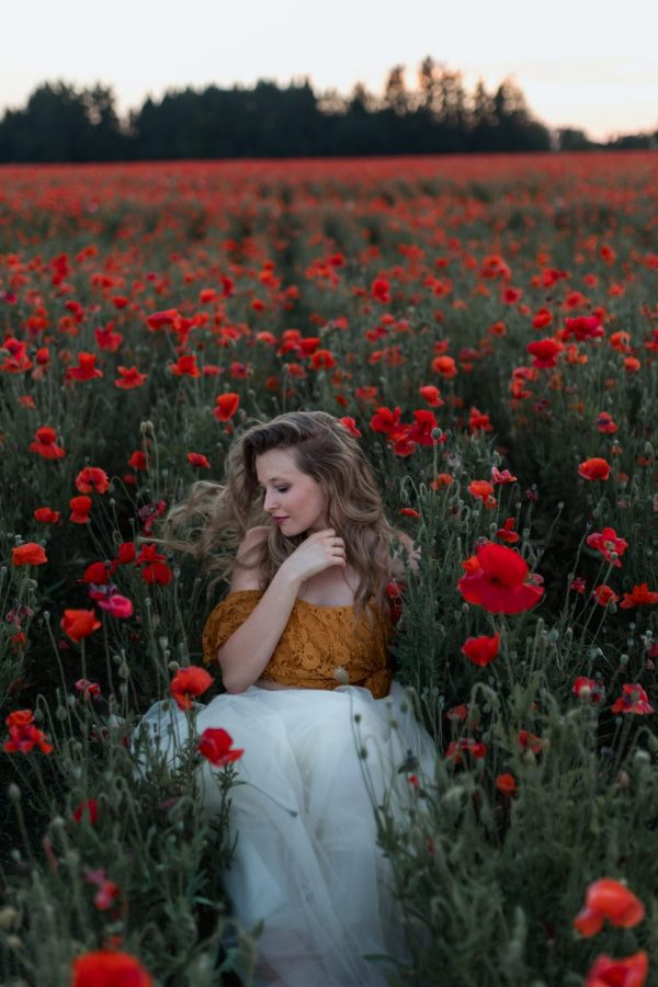 poppy flowers field blonde