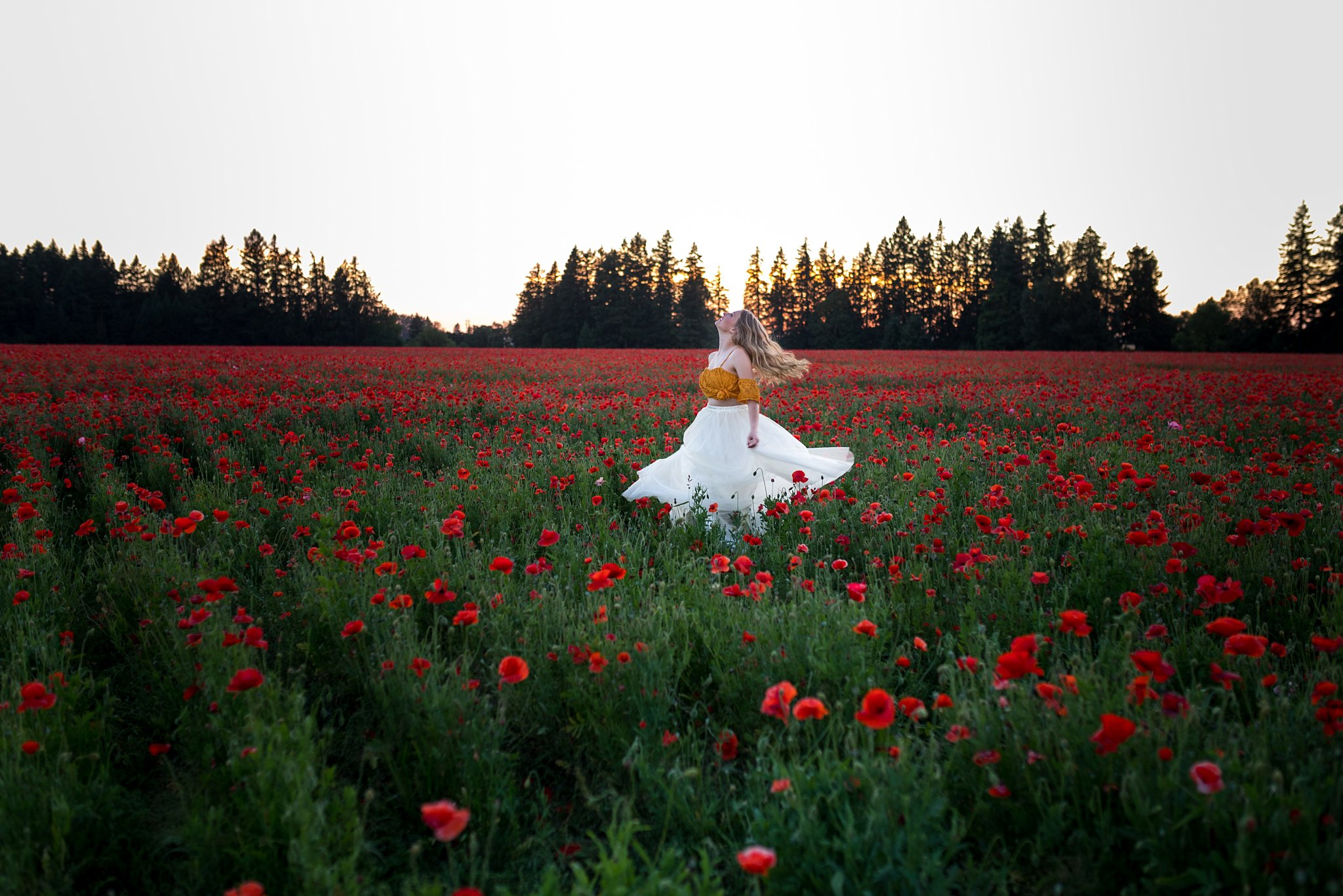 twirl in poppy flowers